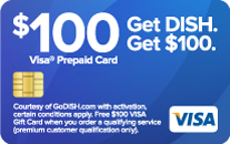 Visa Gift Card OFfer