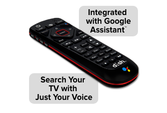 Voice Remote